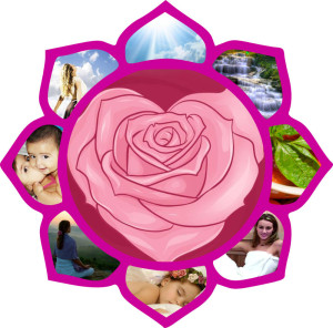 Vida Lotus 9 part system for wellness summary