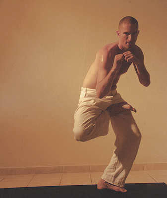 13-michael-ducharme-power-yoga-asana-_crouching-tiger
