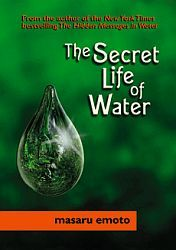 masaru-emoto-the-secret-life-of-water